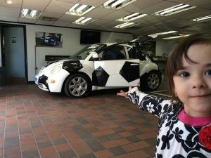 Gotham Auto Works - Tints VW Beetle